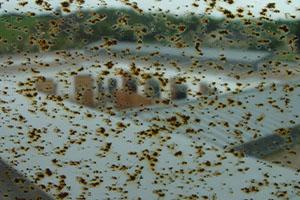 Grinder Splatter Damage on Glass